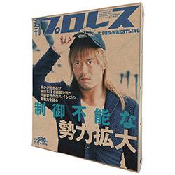 週刊プロレス2000号記念 新日本プロレスキャンバスF3 内藤B